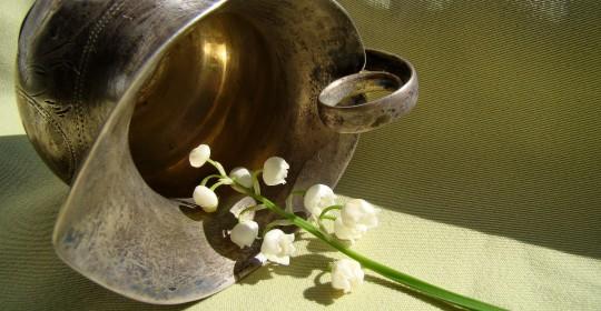 flowers-1753299_1920